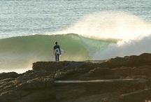 Surf / Beach/ Dive