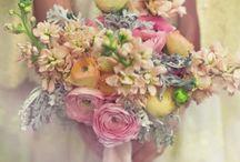 Flowers / by Marsha Wilson