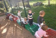 dieren/buiten spelen