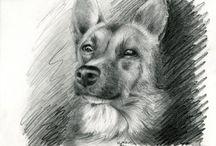 Rysunki psów