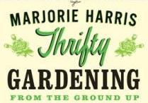 How Does My Garden Grow? / by Maryte Rutkauskas-Running