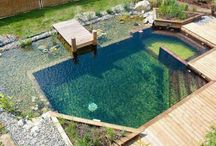 my pool???