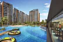 Coco Palms @ Pasir Ris (Singapore New Launch Property) / Coco Palms at Pasir Ris is a popular new condo by Hong Leong and City Devt, Singapore. Find out more - get e-brochure, prices & floor plans here!