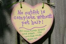 Words of Wisdom / by Sue Anderson