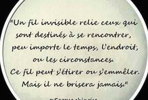 Amour / citations