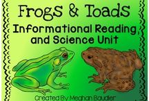 Frog Frenzy / Frog activities for the classroom
