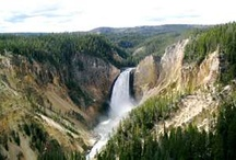 Summer Vacation - Yellowstone  / We are taking a family vacation to Yellowstone National Park in June 2012 - pics for inspiration!