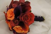 Planning Abby's Wedding / by Raye Reeder