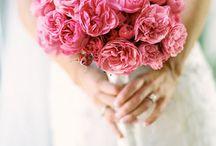 Pink bridal theme