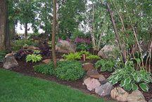 Kivet puutarhassa
