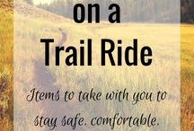 horse trekking and riding holidays