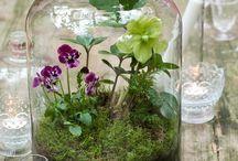 Ideat puutarhaan