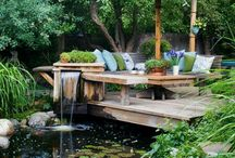 Garden with ponds