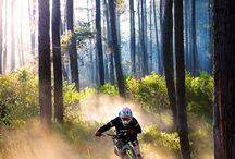 Mountain Biken im südlichen Allgäu für unsere Camping Gäste / Mountainbiken am Alpsee Es gibt eine Vielzahl an Radrunden und Mountainbike Touren. Man kann entweder schön gemütlich am Alpsee entlang, oder auf die Berge mit einer schönen Aussicht auf den Alpsee fahren. Der Mittag beispielsweise hält einige tolle Touren zum Mountainbiken für Sie bereit.  http://alpsee-camping.de