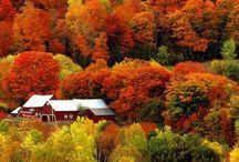 beautiful seasons