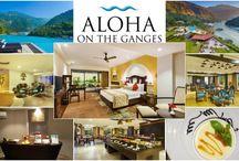 Travel&Rasoi - Aloha on The Ganges