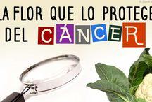 salud cancer