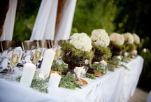 "Grapes and a Wedding / A vineyard, the perfect place to say ""I Do""."