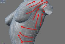 3DCG・参考 / 完成形ではなく、ポリゴンや筋肉の流れや分かりやすさを指す。