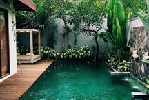 Pool 》