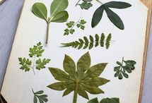 Botanical print & co.