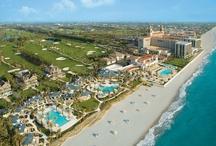 {Inspiration} Palm Beach