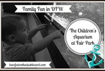 Dallas & Fort Worth Family Fun / Ideas and Inspiration for Entertaining a Family in the DFW Metroplex