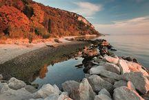 Discover Trieste