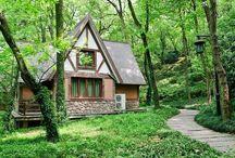 Earthship (Eco/Mud/Cob) Home