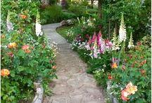 Garden, path