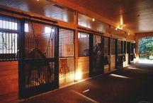 Fabulous Horse Barns. . .  / by Beth Foster-Hattan