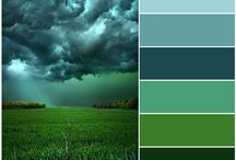 color scheme