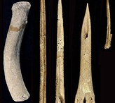 History: Ice Age