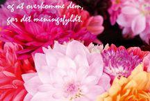 Blomster, citater mm.
