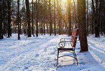 Зима / Winter