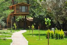 Fethiye Rentals villas