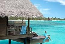 Travel / Living the Dream....