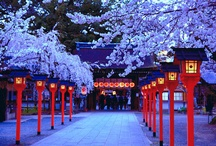 Beautiful Magical Japan / by Lil´ Sweet Haven .