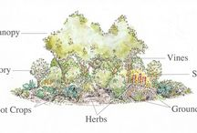 Permaculture / Permaculture ideas.