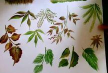 flower & leaves patterns