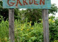 Children's Garden / by Kendy Kovalik