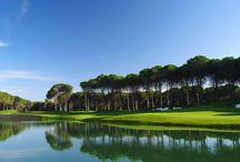Regnum Carya Golf 7 Nights 4 Rounds Golf 1x Carya 1x National 1x Pasha 1x Sultan / Regnum Carya Golf 7 Nights 4 Rounds Golf 1x Carya 1x National 1x Pasha 1x Sultan   https://visitantalya.com/regnum-carya-golf-7-nights-4-rounds-golf-1x-carya-1x-national-1x-pasha-1x-sultan-59520