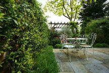 Garden design, landscaping and maintenance in Queens Park