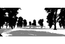 Large Broadleaf Revit Trees with leaves