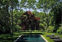 Swimming Pool Envy