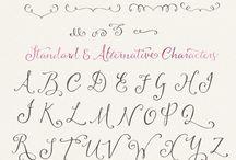Modern Calligraph & Handlettering