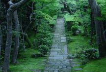 Garden Ideas - Paths