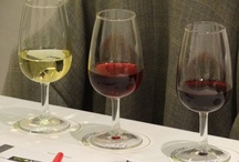 Taste of the Vine