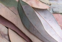 colour inspiration   chalky pastels