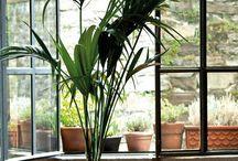 MYC-5 Jardineras y Decoración / Materiales y Complementos para el Viverismo y la Jardinería